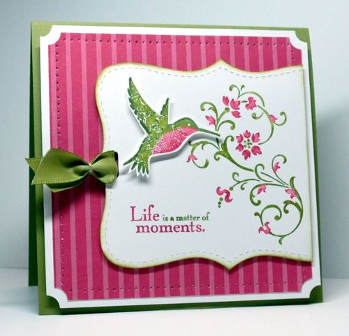Hummingbirdlf3